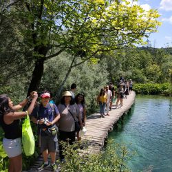 Krka tours from Split